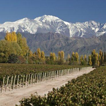 Mendoza entre los destinos preferidos para las vacaciones 2020, según Booking.com