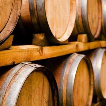 Bodegas de Argentina inicia un foro permanente de sustentabilidad vitivinícola para la industria: cómo inscribirse
